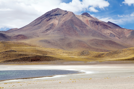 brackish water: Miscanti lagoon landscape with volcano ion the background. Miscanti Lagoon are a brackish water lakes located 4000 metres above the sea level in the Antofagasta Region in northern Chile, about 100 Km from San Pedro de Atacama. Stock Photo