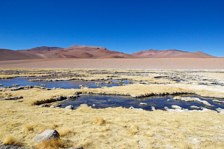 Salar de Tara and Aguas Caliente landscape in the Los Flamencos National Reserve, Chile. This area is made up of two salt flats an altutude of up 4860 meters above the sea level. Los Flamenco National Reserve is a nature reserve in northern Chile.