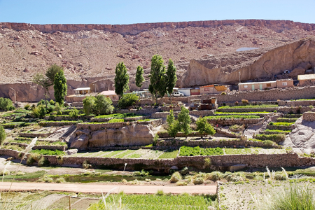 tributary: Terrace fields at the Caspana village, Chile. Caspana is a Chilean village, 85 km from Calama, in the gorge carved by the river shared its name and that is a tributary of the Salado river. Agricultural terrasces are part of the landscape.
