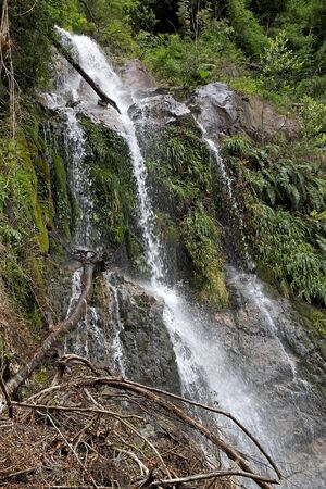 perez: Waterfall in the forest at the Vicente Perez Rosalez NationalPark, Chile. It is located in the Los Lagos Region, 82 Km northeast of Puerto Montt