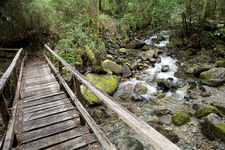 perez: Bridge over the stream in the forest at the Vicente Perez Rosalez NationalPark, Chile. It is located in the Los Lagos Region, 82 Km northeast of Puerto Montt Stock Photo