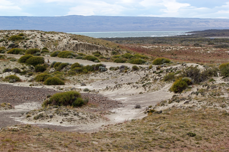 Desert shrubs in Patagonian steppe, Argentina with Viedma Lake in the background Banco de Imagens