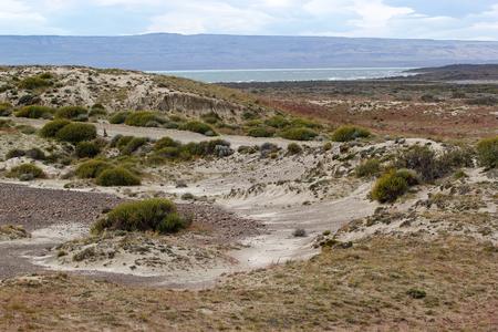 Patagonian 대초원, 백그라운드에서 Viedma 호수와 아르헨티나에서 사막 관목
