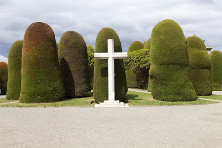 Cross and trees at the Municipal cemetery in Punta Arenas, Chile. Punta Arenas is the capital city of the Magallanes and Antartica Chilena