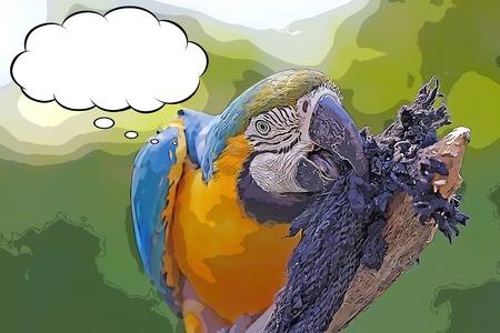 Cartoon blue and yellow macaw (Ara ararauna) on the tree with tought bubble