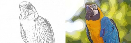 Drawing to be colored cartoon blue and yellow macaw (Ara ararauna) Stock Photo