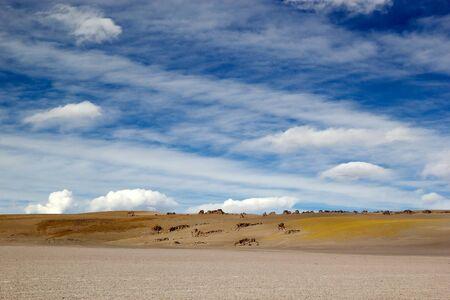 Laguna Grande in the Catamarca Province at the Puna de Atacama, Argentina. Puna de Atacama is an arid high plateau in the Andes of northern Chile and Argentina. In Argentina Puna's territory is extended in the provinces of Salta, Jujuy and Catamarca Banco de Imagens