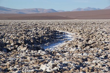 The fleur de sel in Salta Province in northwestern Argentina. The fleu de sel is a thin layer of salt on the surface from the crystallization eras of salt pan 版權商用圖片