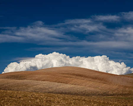 Cultivated fields with big fluffy white cloud in Alentejo, in the south of Portugal. photo