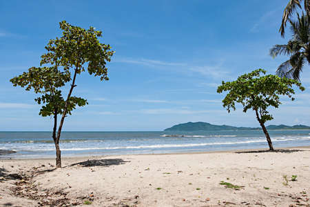 rica: View over Tamarindo beach, Costa Rica Pacific Coast.