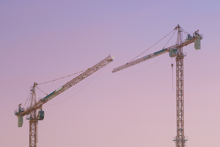 two cranes before sunrise