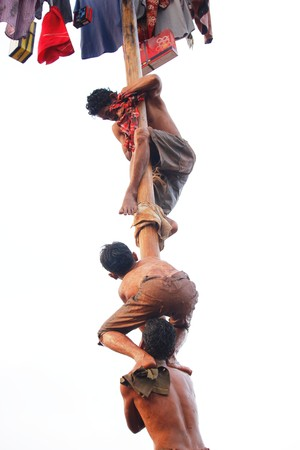 Nut tree-climbing contest to commemorate Indonesian independence day, in Depok, West Java, Indonesia, August 17, 2015.