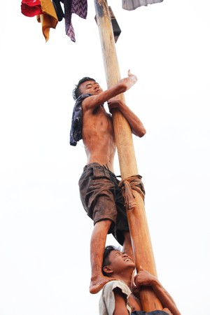 traditional climbing: Depok, Indonesia, 17 August 2015 - Nut tree-climbing contest to commemorate Indonesian independence day, in Depok, West Java, Indonesia, August 17, 2015.