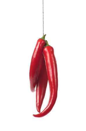 Red hot chili pepper isolated on white Stock Photo - 14410656