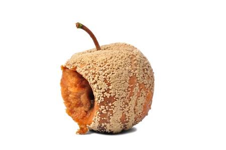 Macro of rotten apple isolated on white background Stock Photo - 17191017