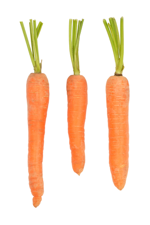 Fresh red carrots isolated on white Stock fotó - 24695280