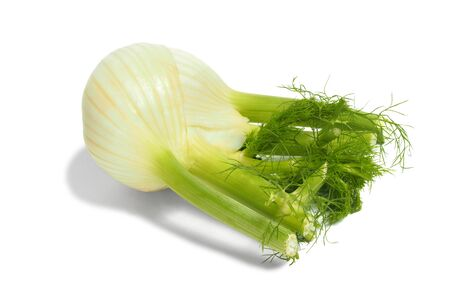 bulb and stem vegetables: Fresh green Florence fennel bulb on white background