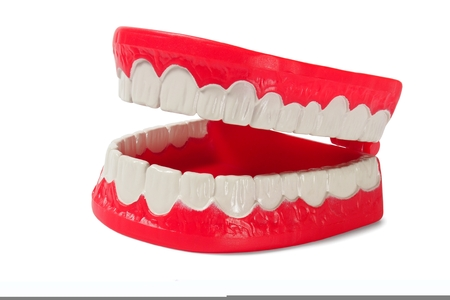 artificial teeth: Open denture on white background Stock Photo
