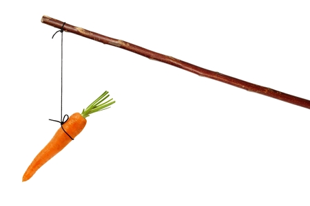 Stick avec la carotte sur la corde isolé sur blanc