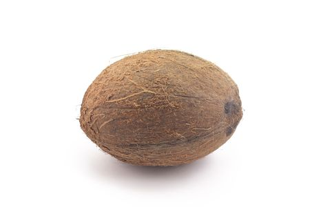 coconut lying on a white background