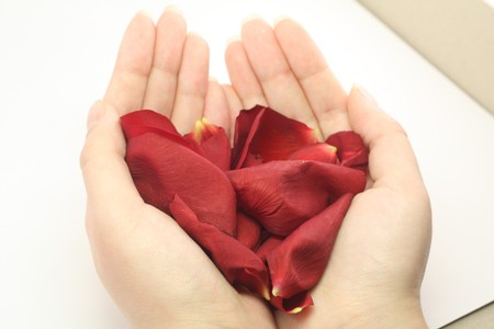 womans hands holding rose petals in the shape of the heart Stock Photo