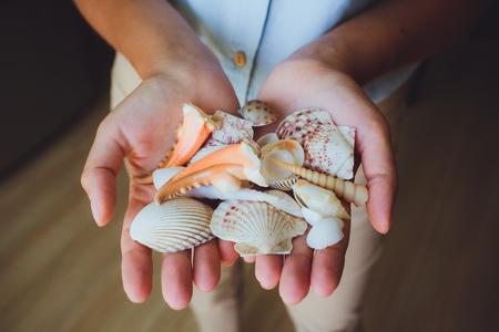 in human hands, women holding beautiful seashells, cone, starfish