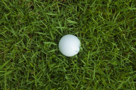 Golf ball on the grass photo