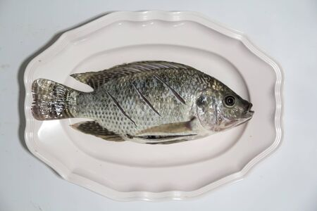 large cichlid: Tilapia for cook on white background Stock Photo