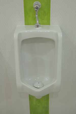 urinal: The sanitary, ware, bathroom, toilet, white, interior, modern, ceramic, design, urinal, hygiene, room, bowl, clean, urinate, water, restroom, background, urine, wall, sink, wood, luxury, nobody, hygienic