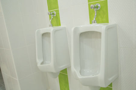 Urinoir In Badkamer : Het sanitair waren badkamer toilet wit interieur modern