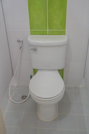 bowl sink: The sanitary, ware, bathroom, toilet, white, interior, modern, ceramic, design, urinal, hygiene, room, bowl, clean, urinate, water, restroom, background, urine, wall, sink, wood, luxury, nobody, hygienic