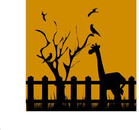 giraffe near dead tree