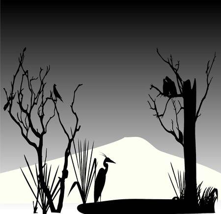 birds in autumn Illustration