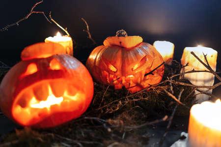 Halloween-Kürbisse in einem gruseligen Wald nachts. Jack-O-Laternen mit Lichtern. Süßes oder Saures. 2019 Standard-Bild