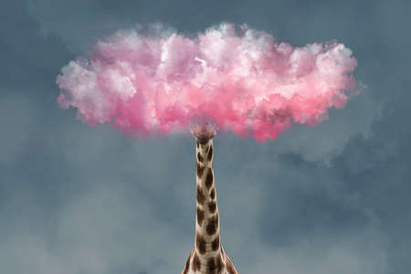 Giraffe Head in Pink Clouds. Creative Unusual Collage. Concept of Romantic Person Dont Want To Live in Real World.