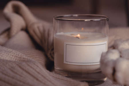 Symbol Of Coziness. Burnng Scented Aroma Candle In Glass With Blank White Label Near Cotton Flower On Cozy Stylish Sweater