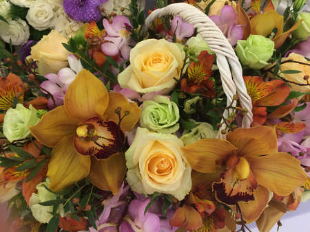congratulate: Beatiful basket. flowers for success and congratulate. Stock Photo
