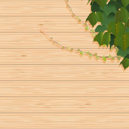 Ivy leaves and grain wall background