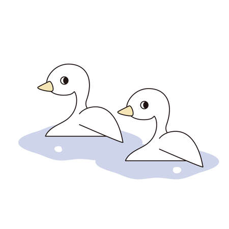 Two ducks swimming side by side on the surface of the water 向量圖像