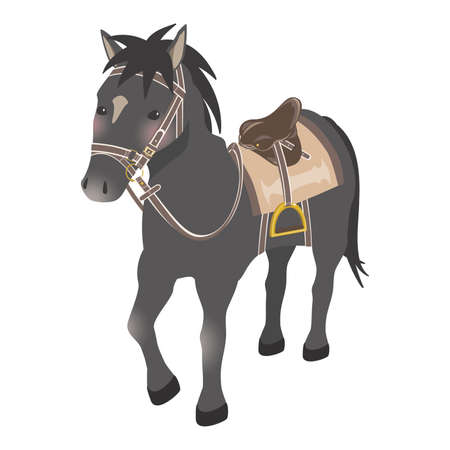 Horseback riding image horse with horse equipment black