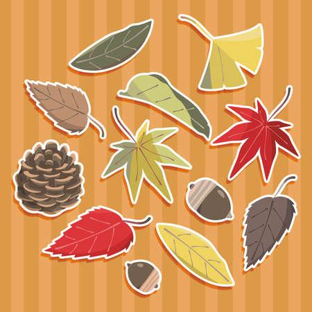 Autumn Fallen Leaves, Tree Fruit Set with White Futi Shadow