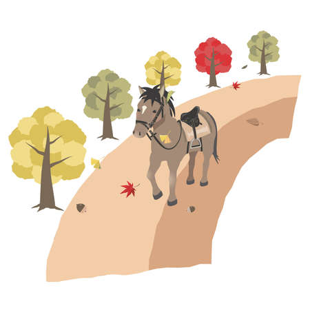 Image of Horseback Riding in Autumn