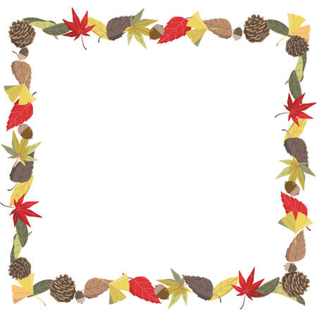 Frame square with fallen leaves and pine-boned acorns