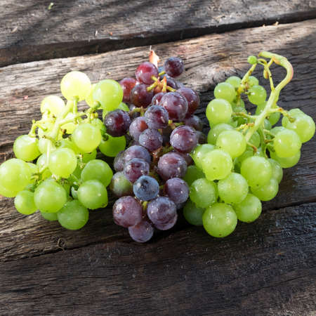 grapes: Grapes in a basket on a background of grape leaves in the sunlight Stock Photo