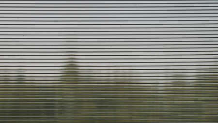 polycarbonate: View through polycarbonate Forest in cloudy weather.