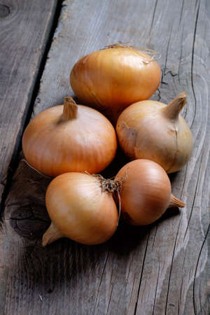 onion: cebollas frescas de un jard�n de casa en las tablas. Foto de archivo