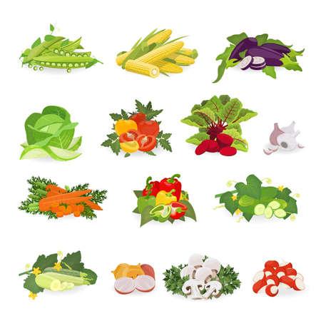 Vector illustration with set vegetables. Healthy food.