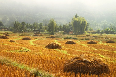 Pai, North of Thailand Stock Photo - 10551665