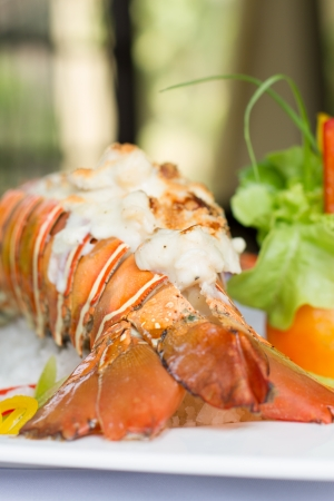 lobster dinner: delicious phuket lobster thermidor salad, closeup for design work