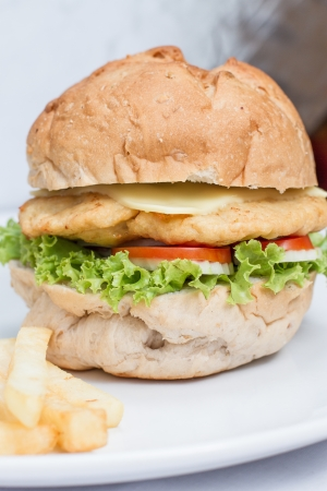 close up cheese burger and  french fries on white dish photo